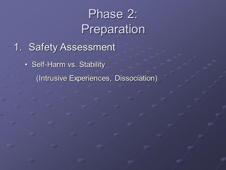 Phase 2: Preparation Safety Assessment Self-Harm vs. Stability