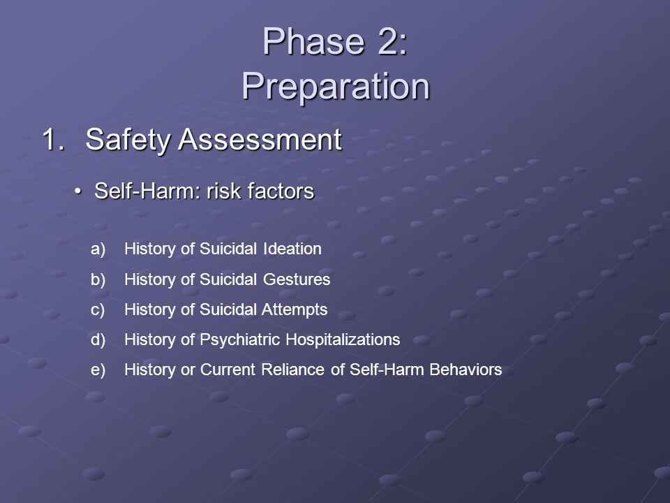 Phase 2: Preparation Safety Assessment Self-Harm: risk factors