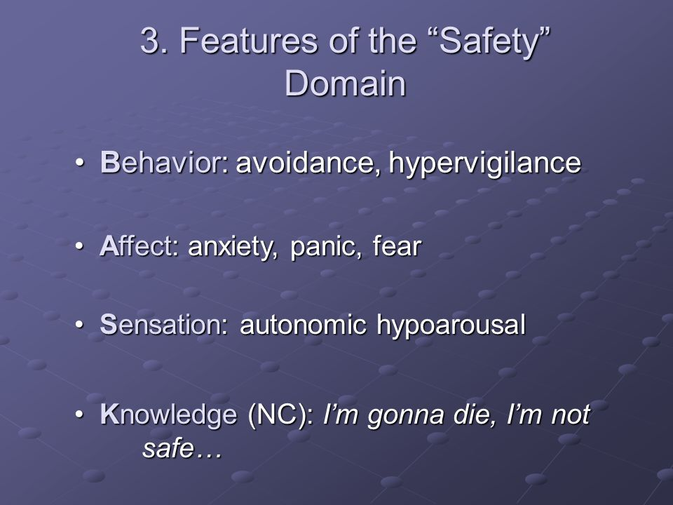 3. Features of the Safety Domain