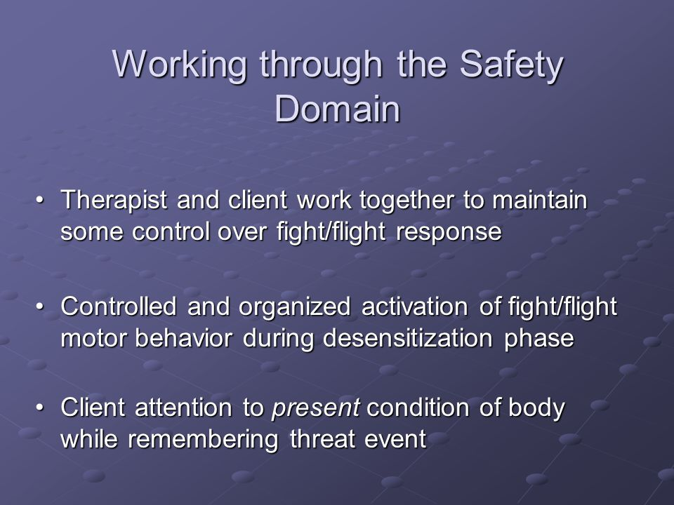 Working through the Safety Domain
