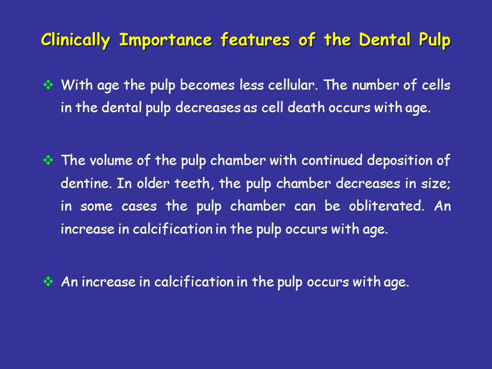 Clinically Importance features of the Dental Pulp