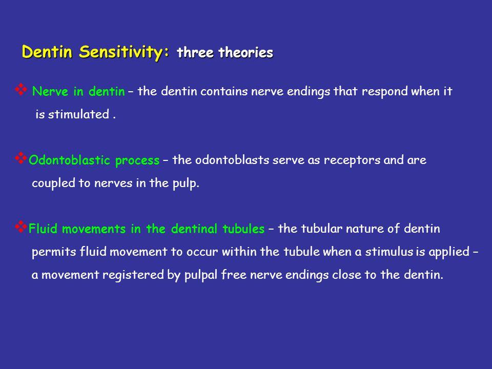 Dentin Sensitivity: three theories