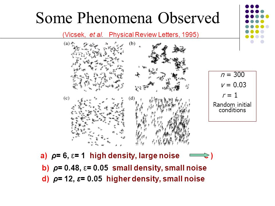 Some Phenomena Observed (Vicsek, et al. Physical Review Letters, 1995)