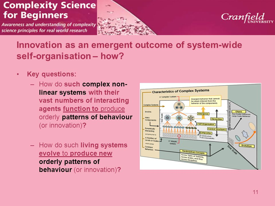 Innovation as an emergent outcome of system-wide self-organisation – how