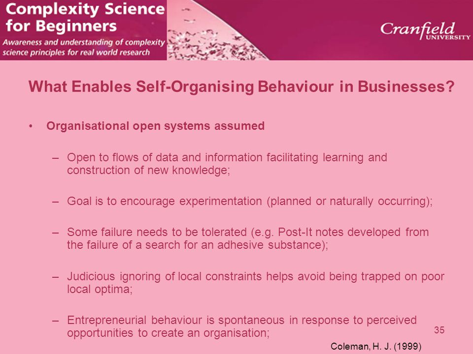 What Enables Self-Organising Behaviour in Businesses