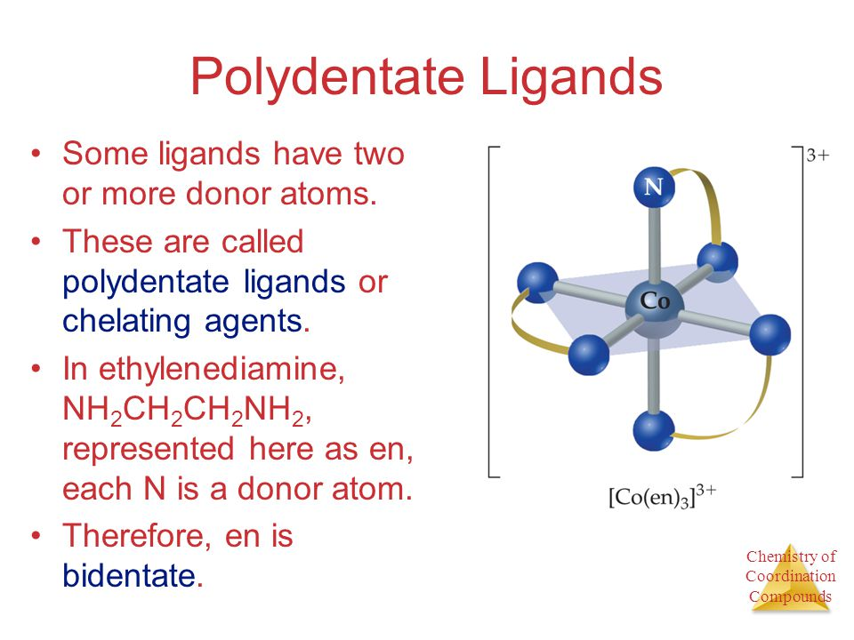 Polydentate Ligands Some ligands have two or more donor atoms.