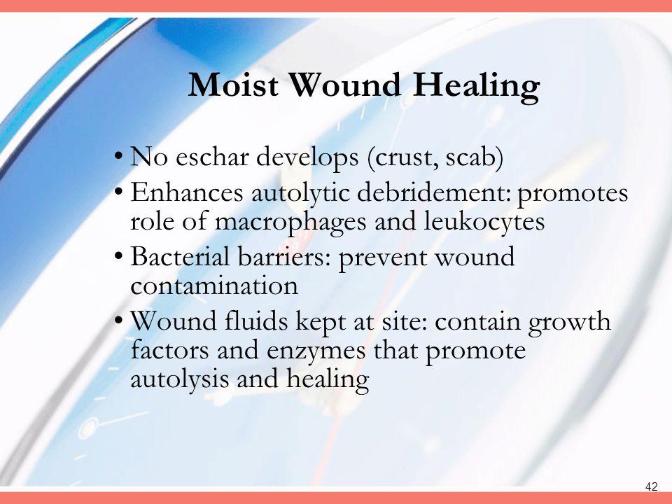 Moist Wound Healing No eschar develops (crust, scab)