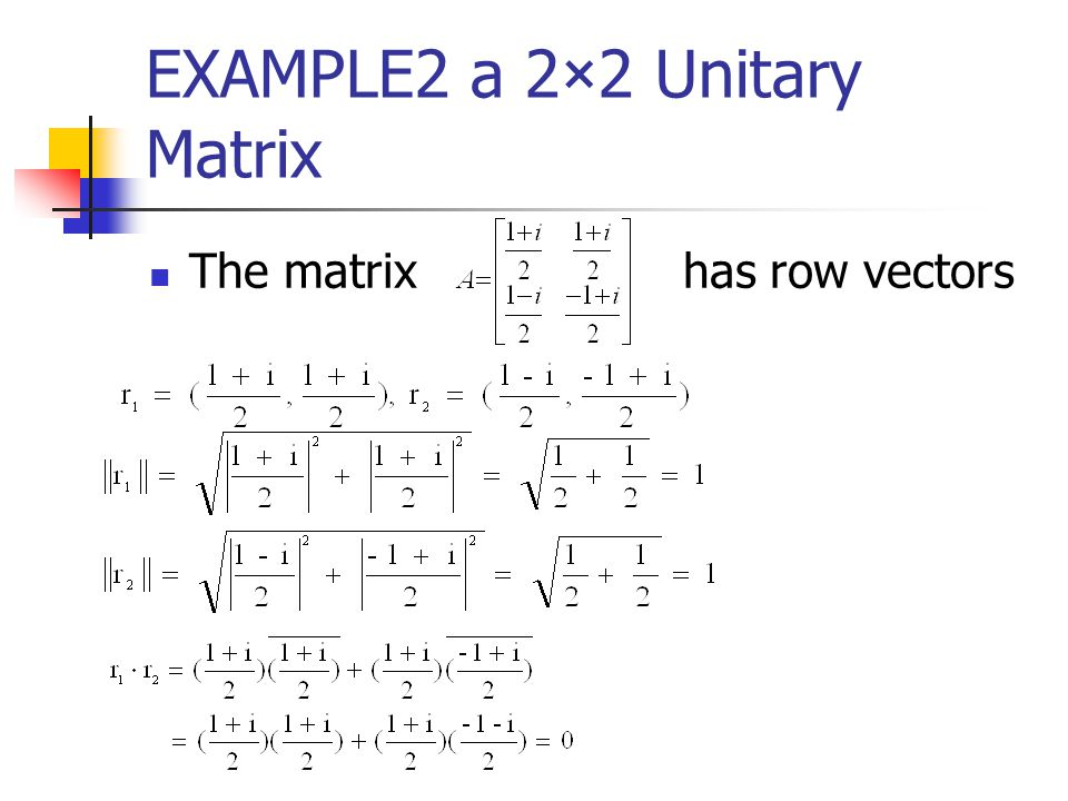 EXAMPLE2 a 2×2 Unitary Matrix