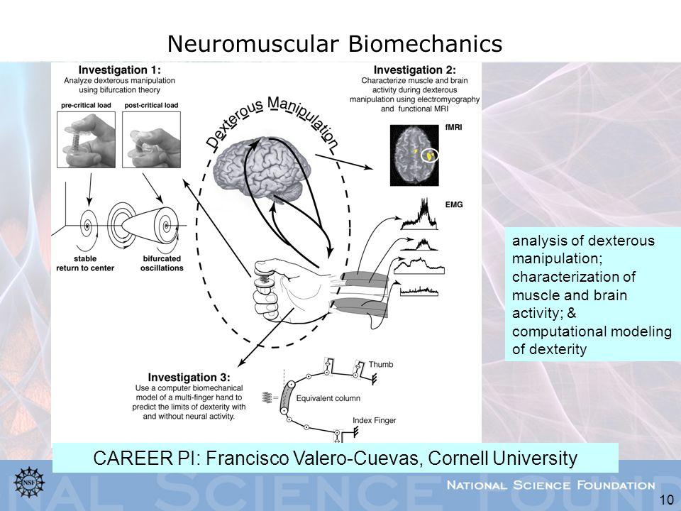 Neuromuscular Biomechanics