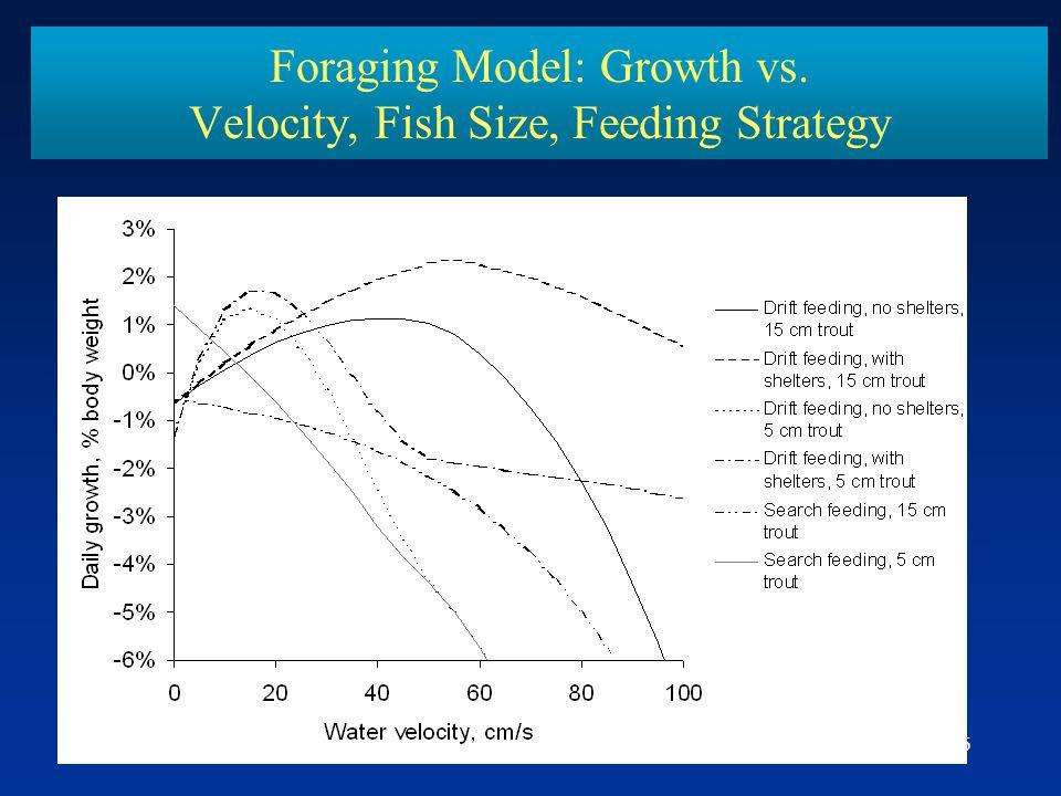 Foraging Model: Growth vs. Velocity, Fish Size, Feeding Strategy