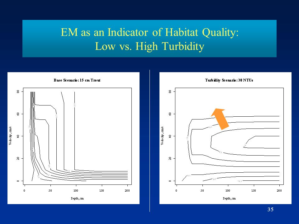 EM as an Indicator of Habitat Quality: Low vs. High Turbidity