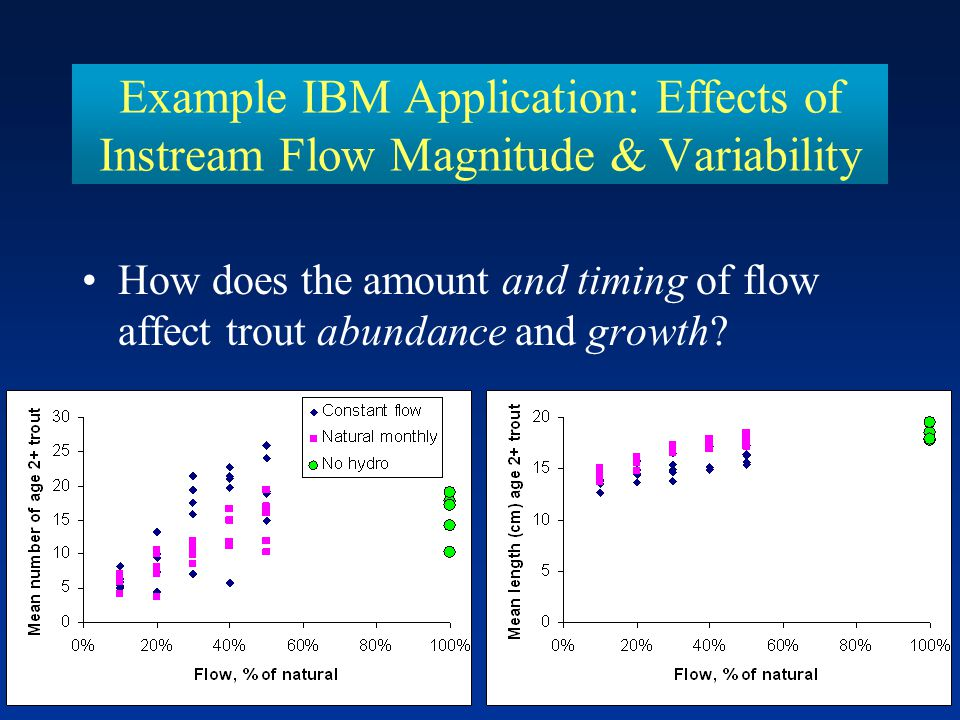 Example IBM Application: Effects of Instream Flow Magnitude & Variability