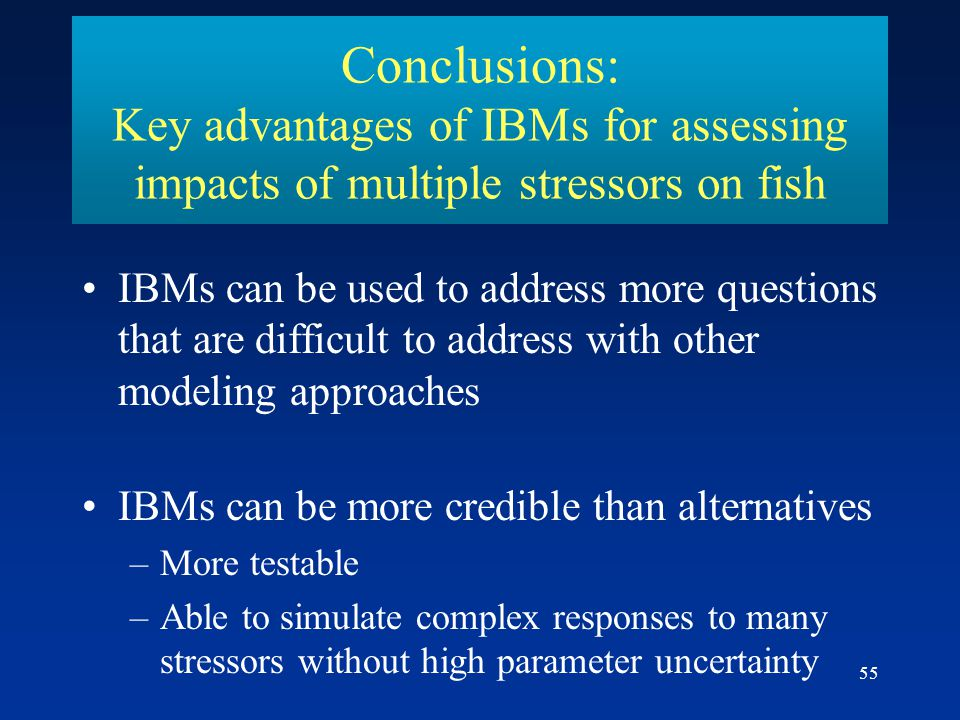 Conclusions: Key advantages of IBMs for assessing impacts of multiple stressors on fish