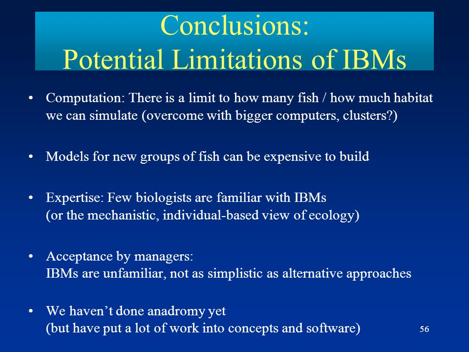 Conclusions: Potential Limitations of IBMs