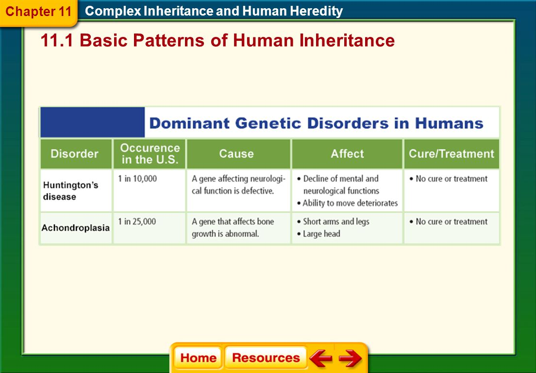 11.1 Basic Patterns of Human Inheritance