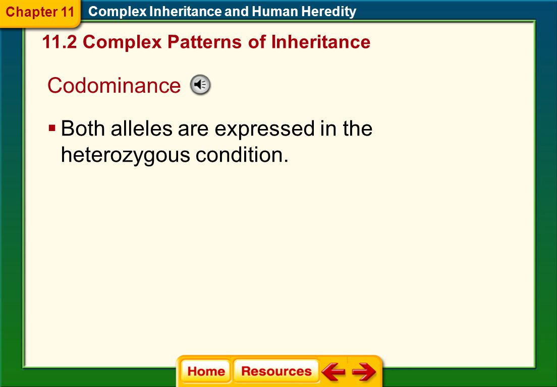 Both alleles are expressed in the heterozygous condition.