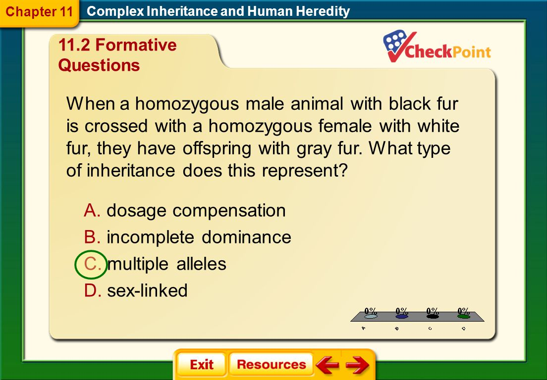 Chapter 11 Complex Inheritance and Human Heredity Formative Questions.