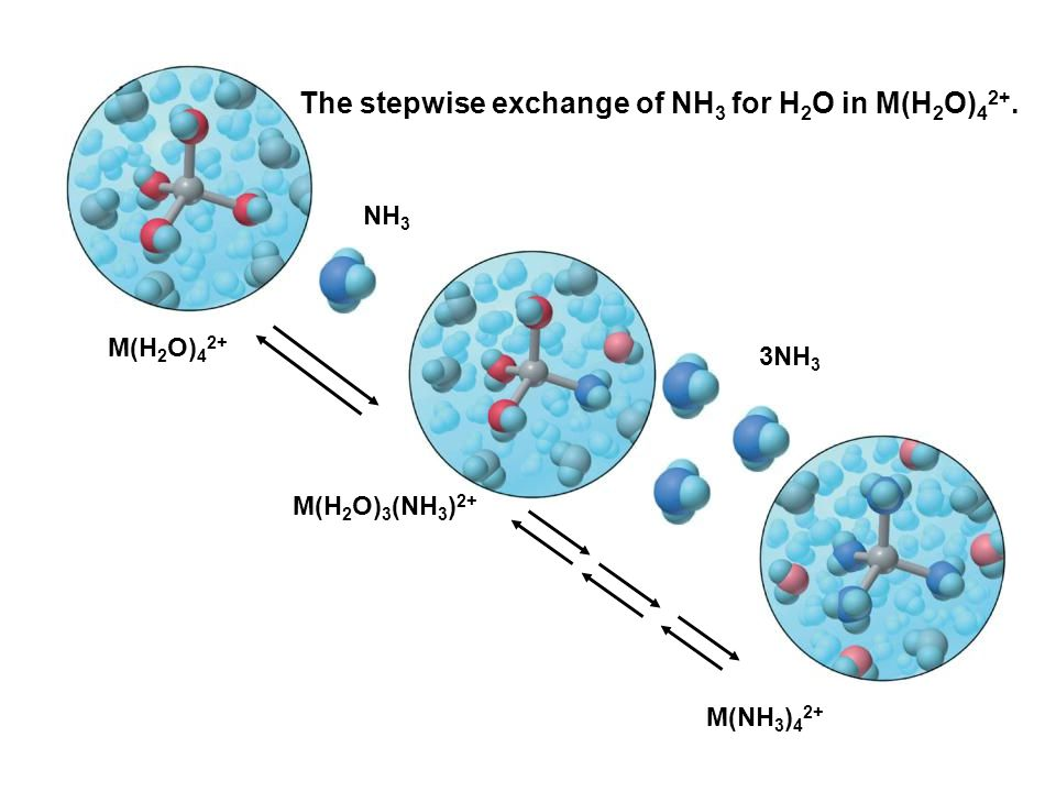 The stepwise exchange of NH3 for H2O in M(H2O)42+.