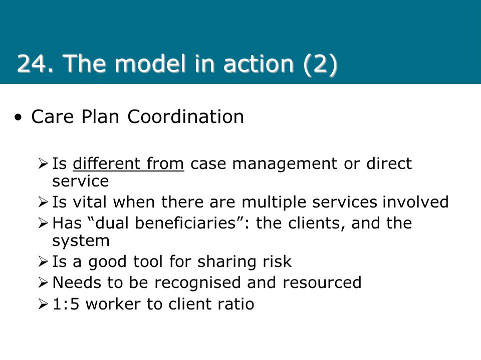 24. The model in action (2) Care Plan Coordination
