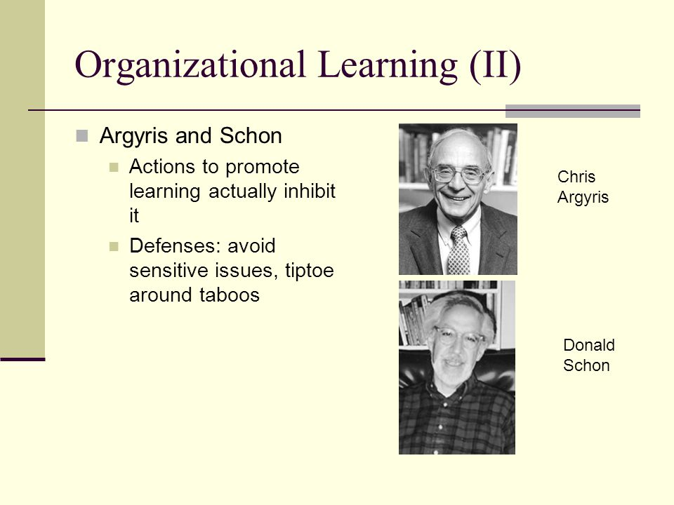 Organizational Learning (II)