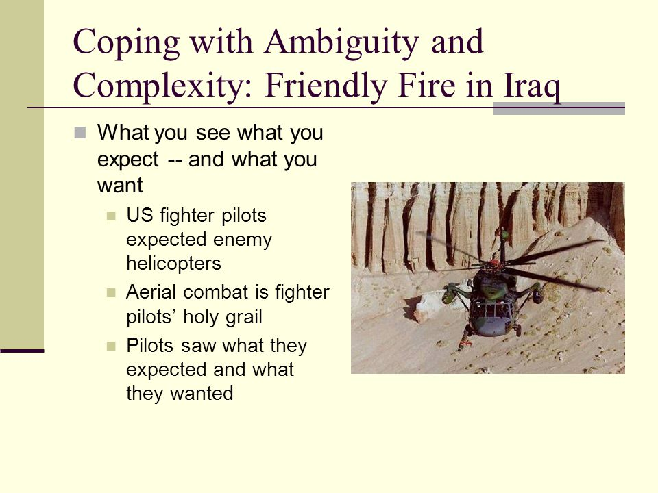 Coping with Ambiguity and Complexity: Friendly Fire in Iraq