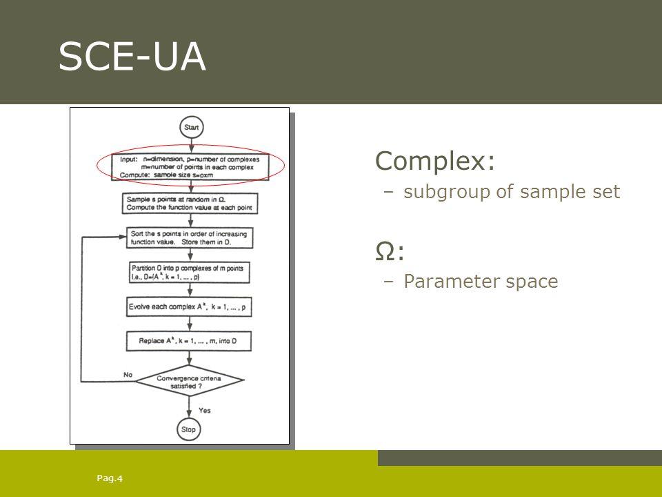 SCE-UA Complex: subgroup of sample set Ω: Parameter space