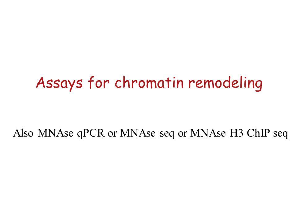 Assays for chromatin remodeling