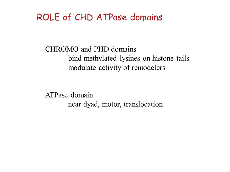 ROLE of CHD ATPase domains
