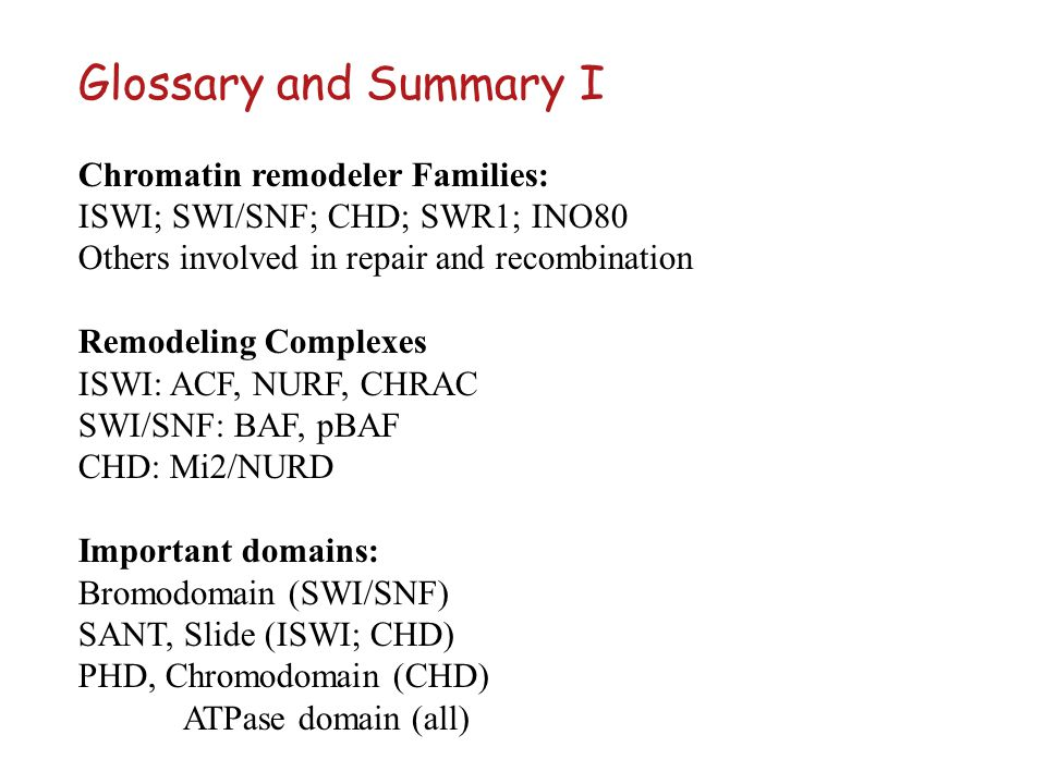 Glossary and Summary I Chromatin remodeler Families: