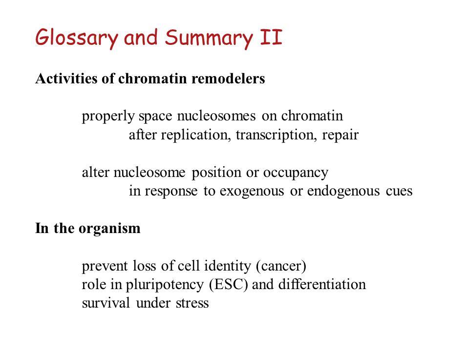 Glossary and Summary II