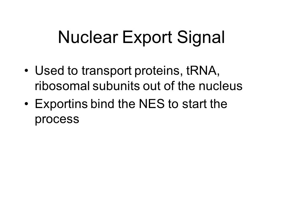 Nuclear Export Signal Used to transport proteins, tRNA, ribosomal subunits out of the nucleus.