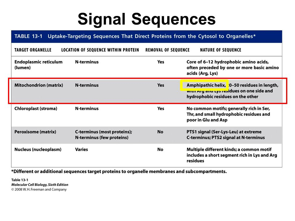 Signal Sequences