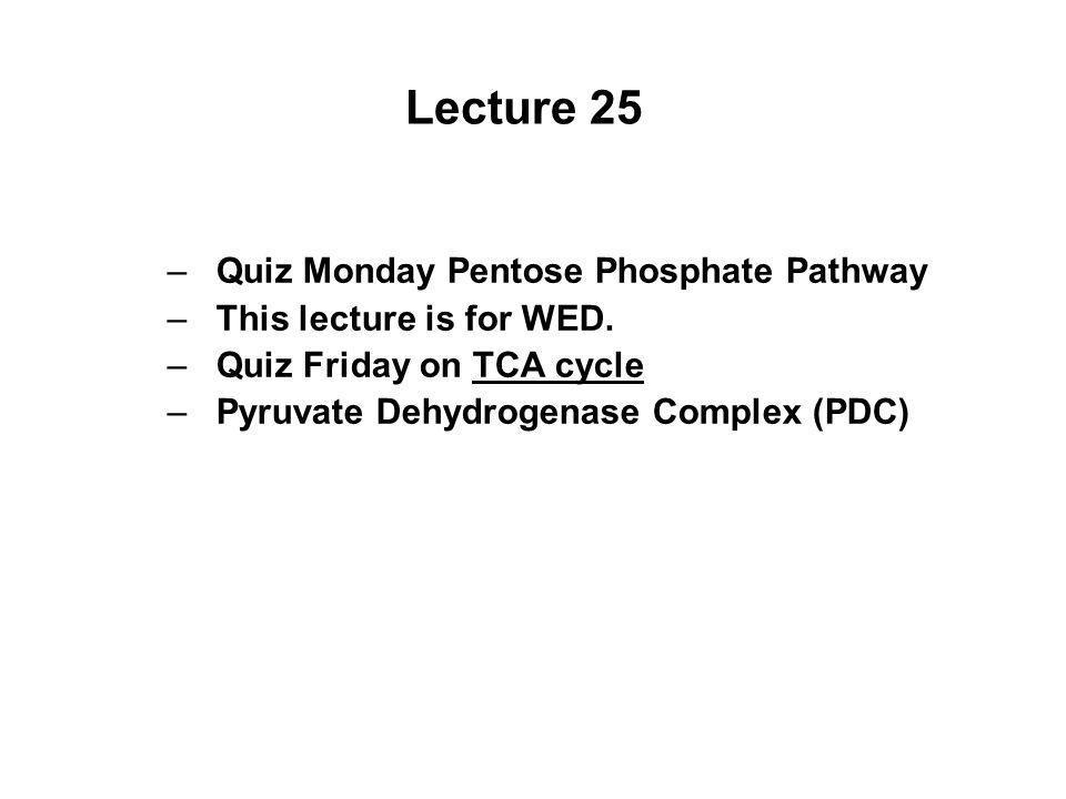 Lecture 25 Quiz Monday Pentose Phosphate Pathway