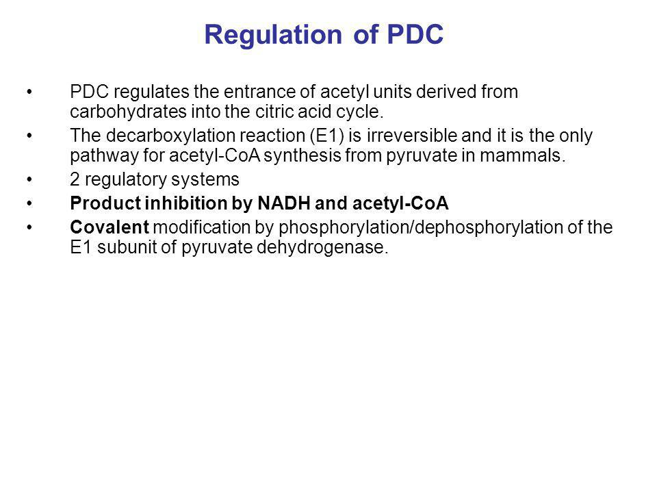 Regulation of PDC PDC regulates the entrance of acetyl units derived from carbohydrates into the citric acid cycle.