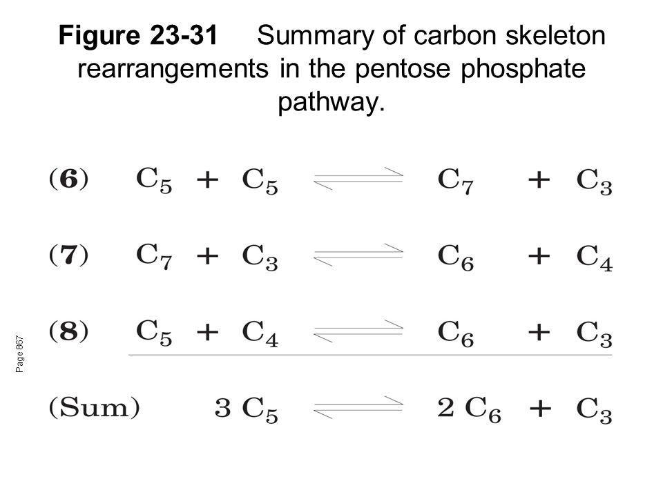 Figure 23-31 Summary of carbon skeleton rearrangements in the pentose phosphate pathway.