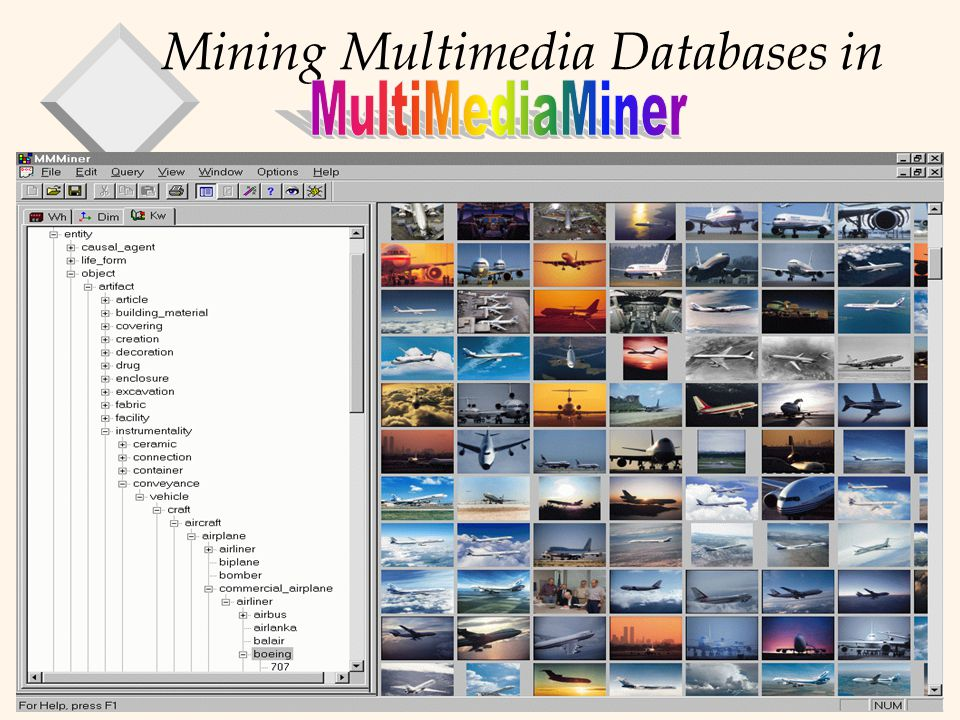 Mining Multimedia Databases in