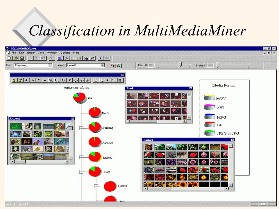 Classification in MultiMediaMiner