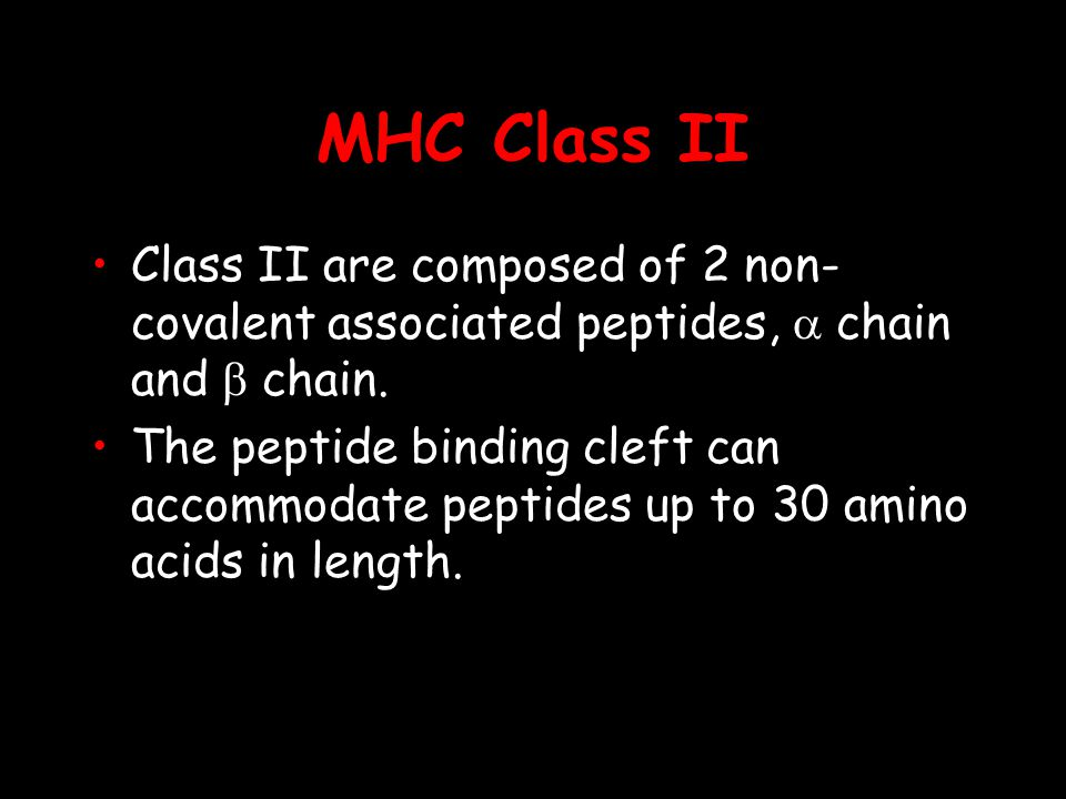 MHC Class II Class II are composed of 2 non-covalent associated peptides, a chain and b chain.