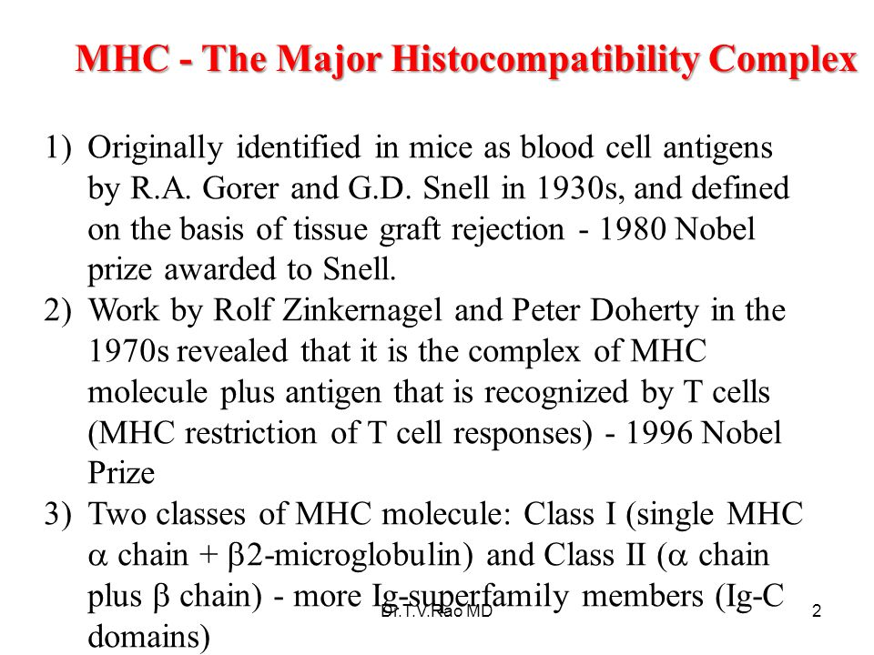 MHC - The Major Histocompatibility Complex