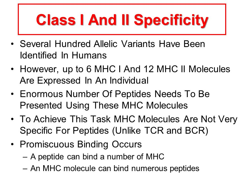 Class I And II Specificity