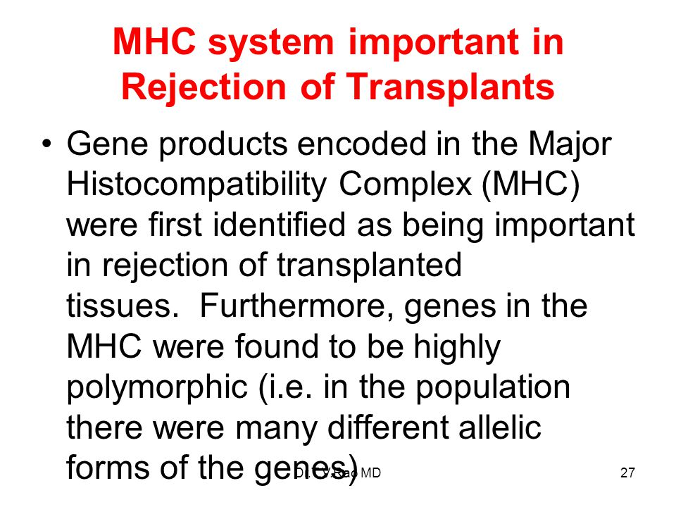 MHC system important in Rejection of Transplants