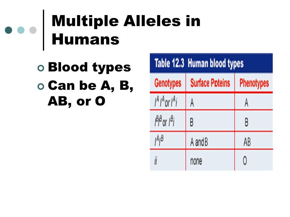 Multiple Alleles in Humans
