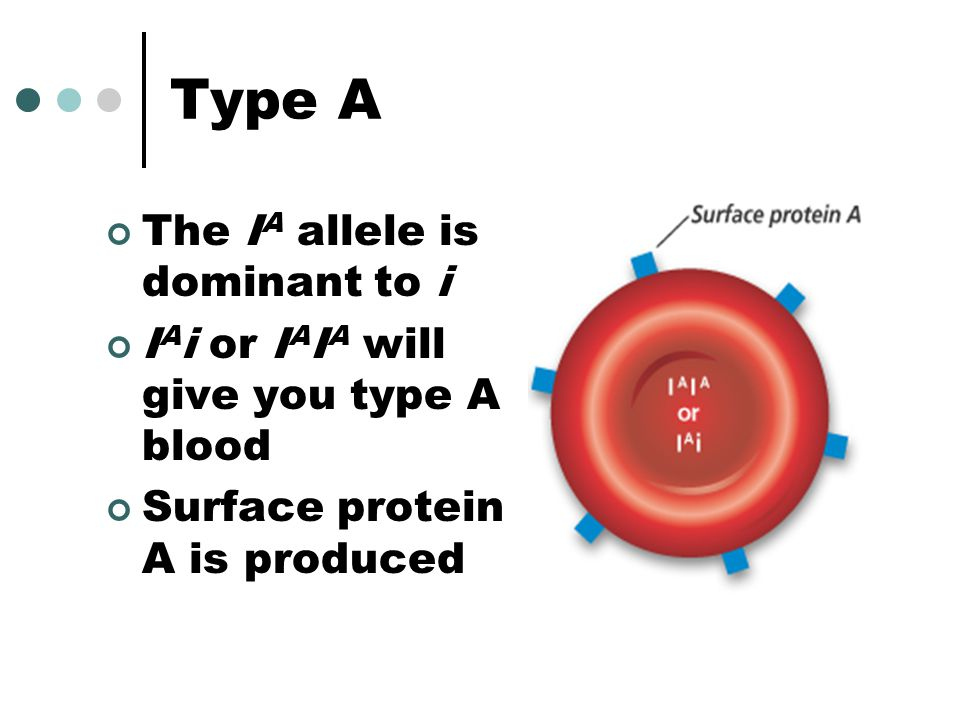 Type A The IA allele is dominant to i
