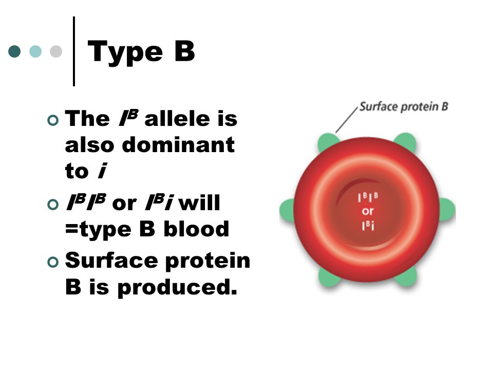 Type B The IB allele is also dominant to i