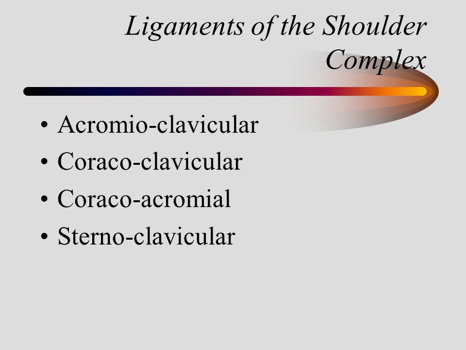 Ligaments of the Shoulder Complex