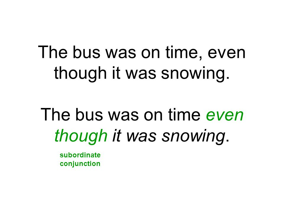 The bus was on time, even though it was snowing