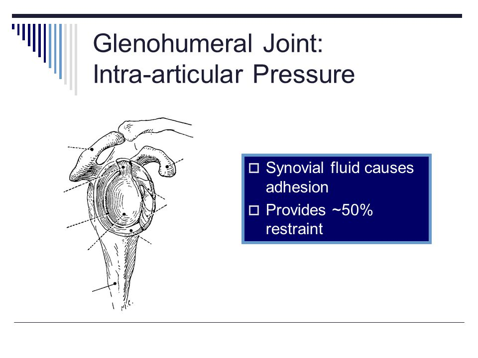 Glenohumeral Joint: Intra-articular Pressure