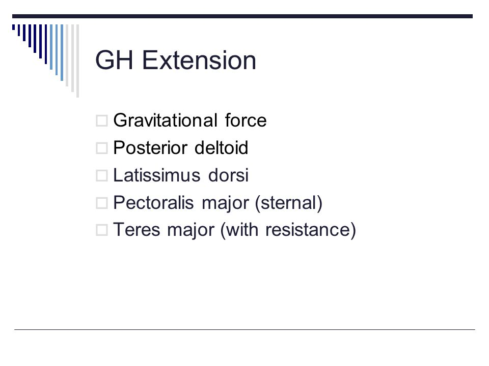 GH Extension Gravitational force Posterior deltoid Latissimus dorsi