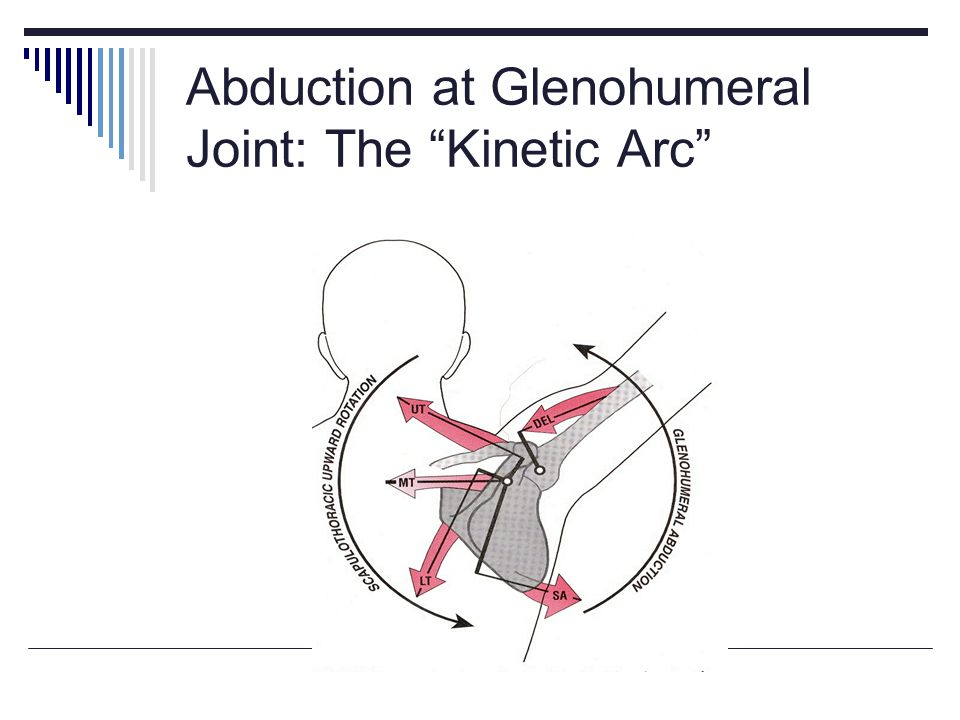 Abduction at Glenohumeral Joint: The Kinetic Arc