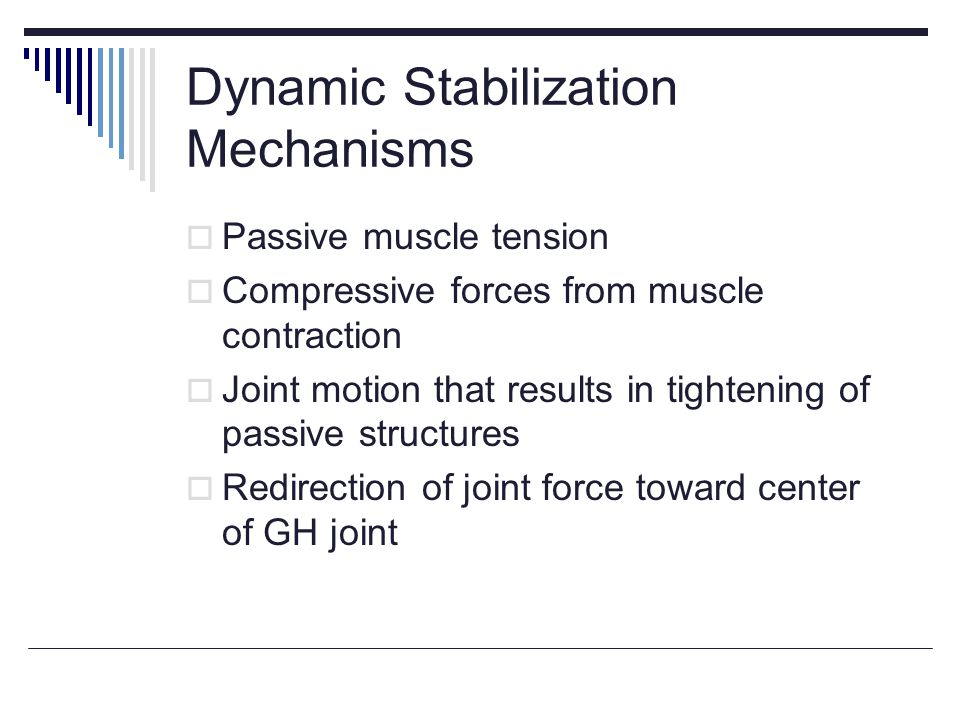 Dynamic Stabilization Mechanisms